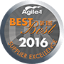Agile - Best of the best 2016